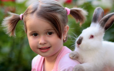 image for February is Adopt a Rescued Rabbit Month